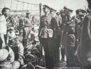 lagar nazist _ 11